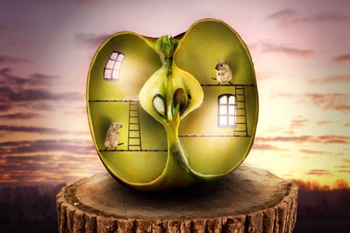 Photo Manipulate a Surreal Apple Habitat Scene Photoshop Tutorial