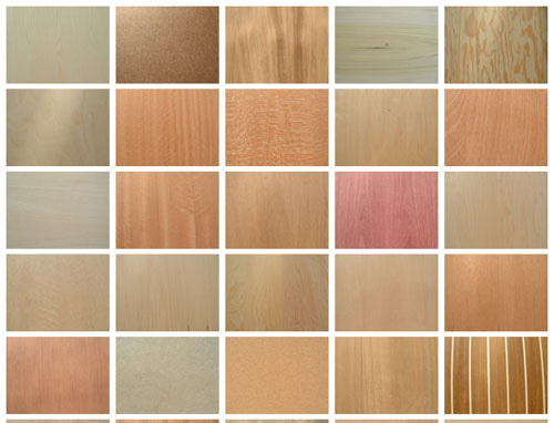 45 Wood Textures by ~Jammurch