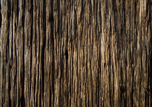 Wood_Texture_by_xNickixstoc.jpg.
