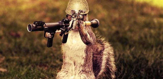 army-squirrel-photo-manipulation 91 Photoshop Photo Manipulation Tutorials: Become A Pro