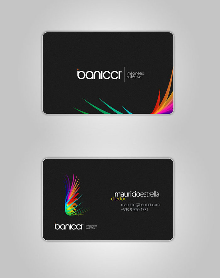 banicci Logo and Business Card Black Business Card