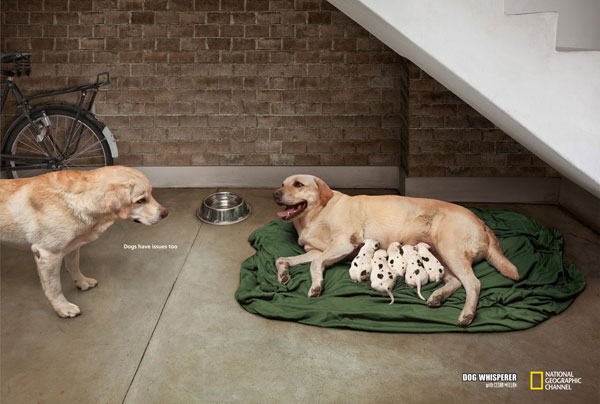 Dogs have issues too Print Ad Inspiration