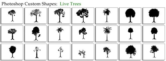 Live Trees Photoshop custom shape