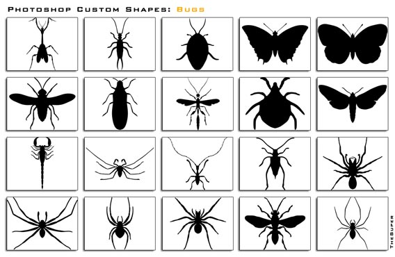 Bugs Photoshop custom shape