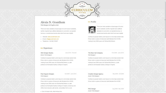Elegance A Few Interesting Resume/CV Website Designs