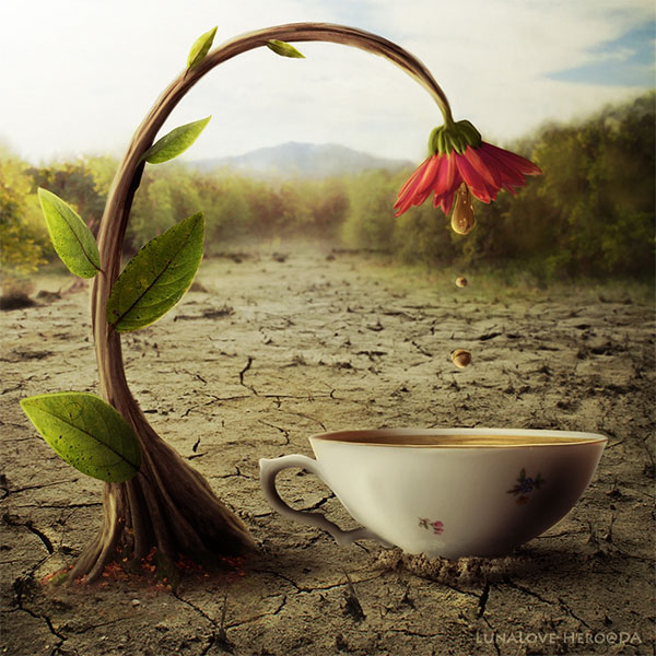Natural tea Photoshop Design Inspiration