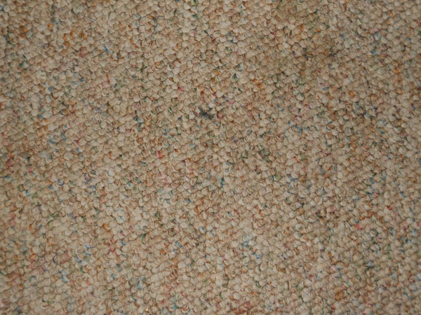 Carpet Texture 7 Free for Download