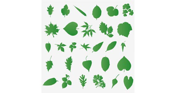 Set Of Leaf Silhouettes Free Vector Graphics