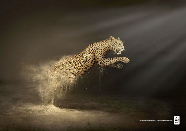 Desertification-destruye-6.000-species-every-year Advertisement Ideas: 500 anuncios creativos y geniales
