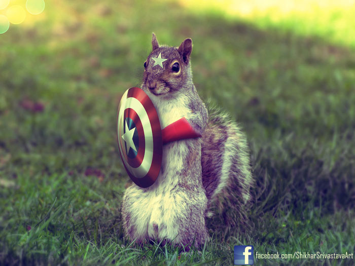 Captain Squirrel - The First Avenger Photoshop Inspiration