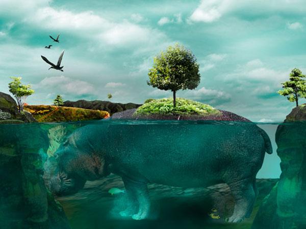 isla Photoshop Design Inspiration
