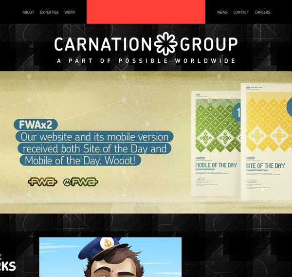 carnationgroup.com