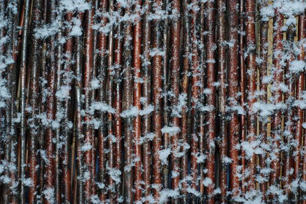 Frozen sticks texture