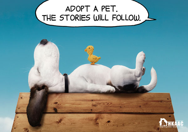 Adopt a pet. The stories will follow Print Advertisement