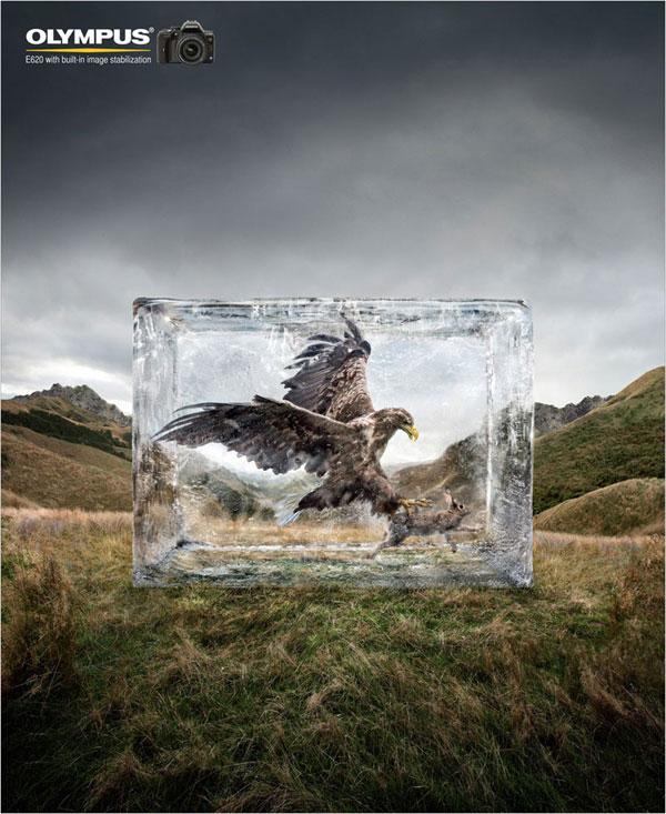 Olympus --- Ideas de estabilización de imagen: 500 anuncios creativos y geniales