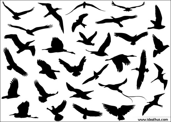 Download 30 Vector Flying Birds silhouettes