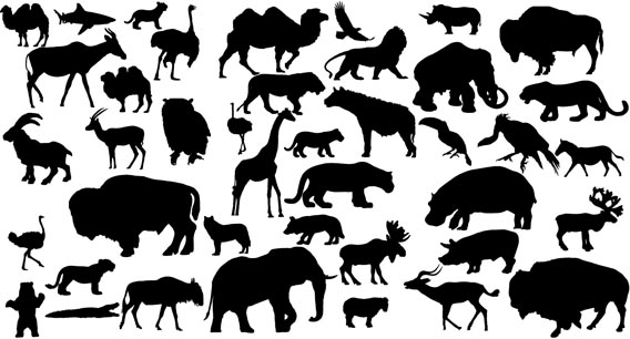 silhouettes of animals. 41 Animal Vector Silhouettes