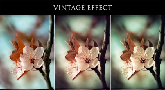 Vintage Effect - Ps Actions -