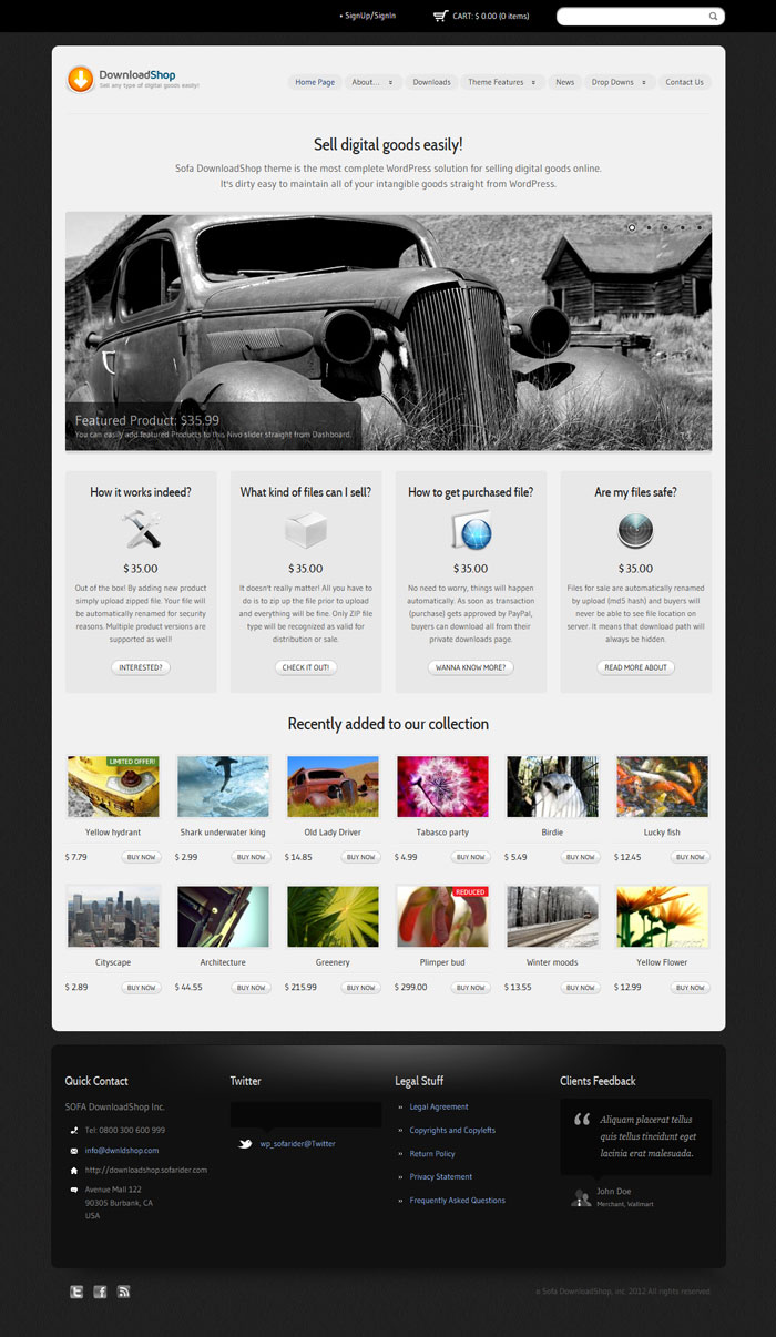 DownloadShop WordPress Theme Design