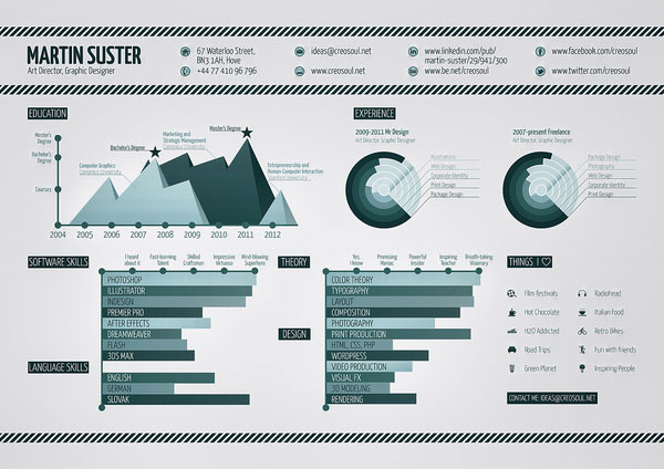 INFOGRAPHIC RESUME Print Design Inspiration