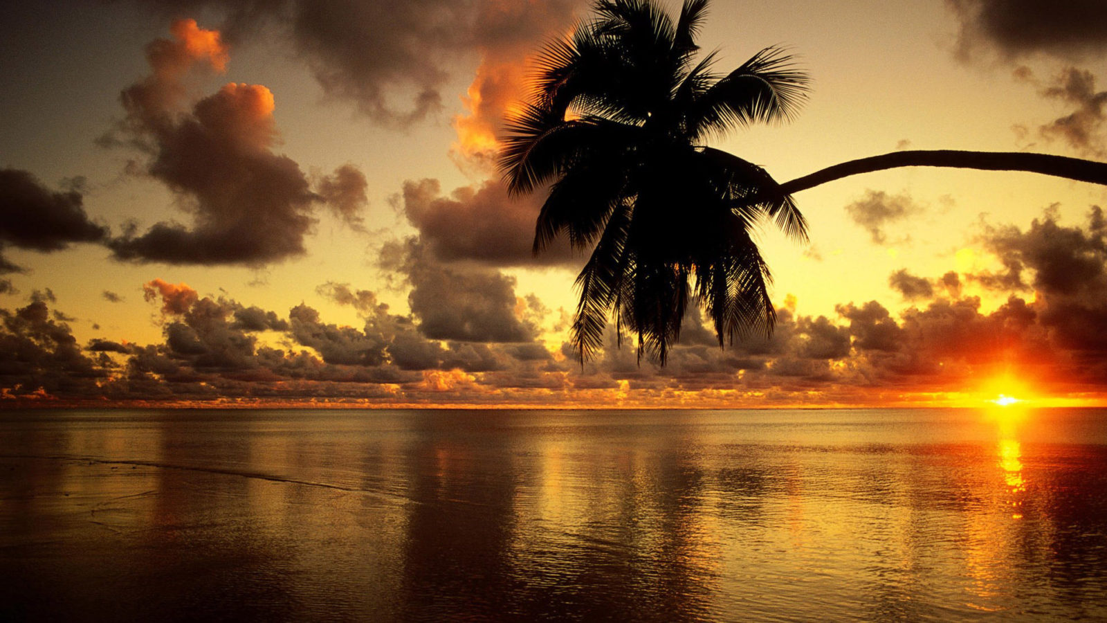129 beach wallpaper examples to put on your desktop background - Wallpapers 1600x900 ...