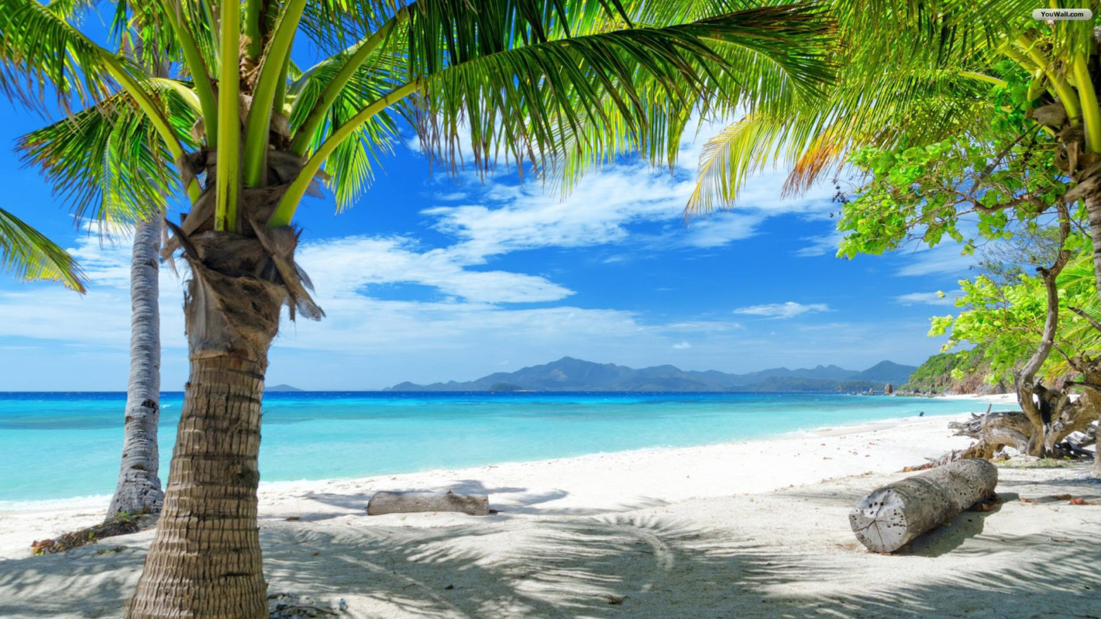Hd Tropical Island Beach Paradise Wallpapers And Backgrounds: 129 Beach Wallpaper Examples To Put On Your Desktop Background