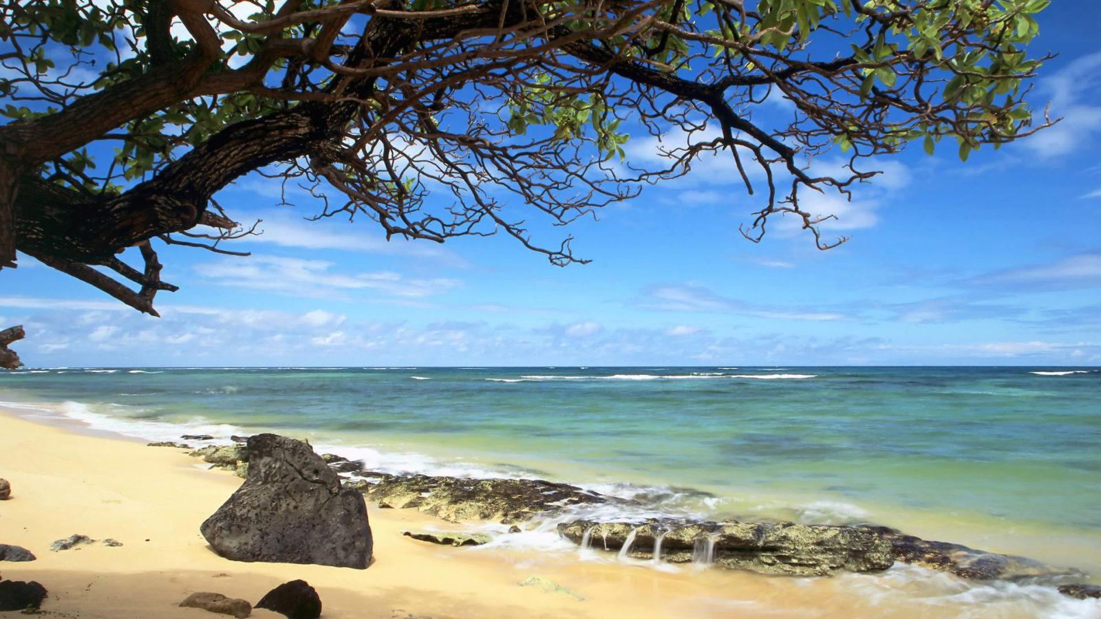 Beach Wallpaper Desktop Background 66 1600x900 129 Examples To