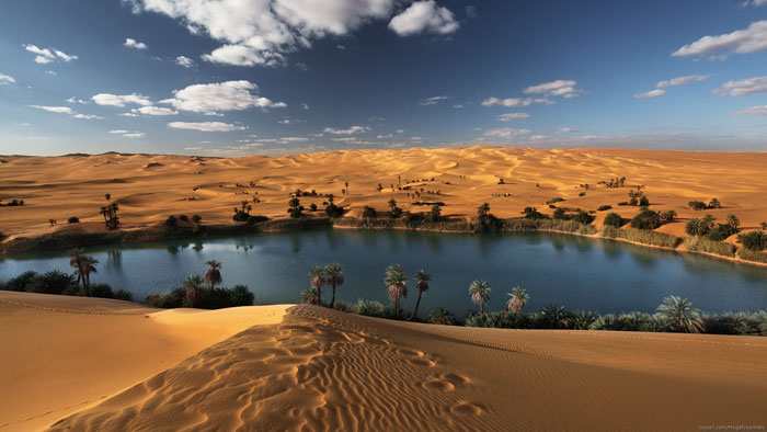 278837 HD Desert Wallpaper Examples To Use As Background