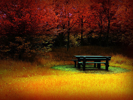 autumn wallpaper. Fire autumn wallpaper