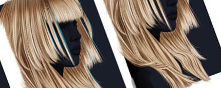 Vectorizing Hair